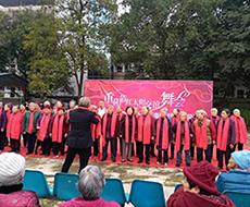 红太阳重阳节交谊舞会