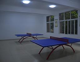 娱乐休闲-乒乓球室